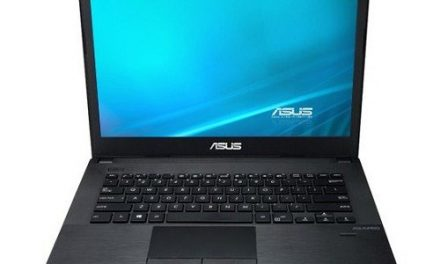 ASUS Pro Essential PU451LD-WO179G